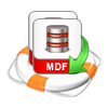 Extract Deleted Data from MDF