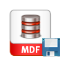 save database file